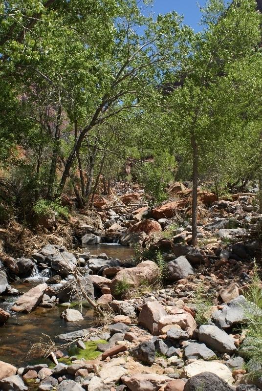De wash van de North Creek