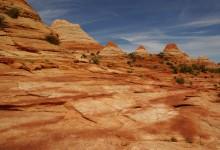 Paria Canyon Wilderness Area & Vermilion Cliffs National Monument