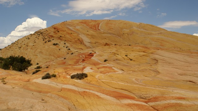 Yellowstone? Yellow Rock! - Paria Canyon Guest Ranch, Utah